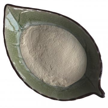 Bio Bacteria Fertilizer, Bulk Organic Fertilizer